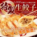 【工場直売】 冷凍生餃子(大) 50個入