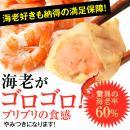 【工場直売】 特製海老餃子50個入