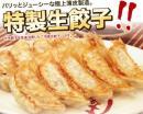 【工場直売】 冷凍生餃子(小) 50個入